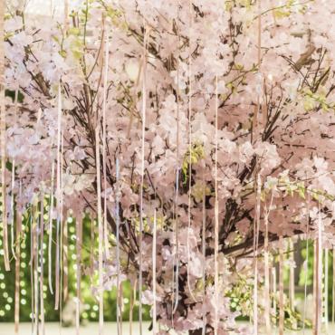 Cherry Blossom Tree Rental Los Angeles