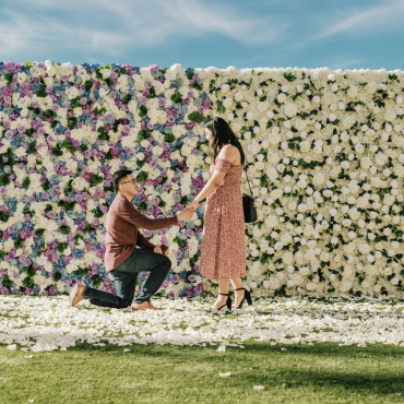 oc marriage proposal