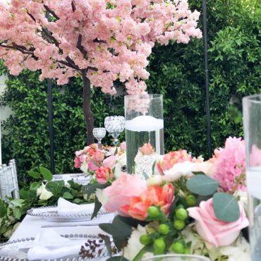Tree Rental for Weddings