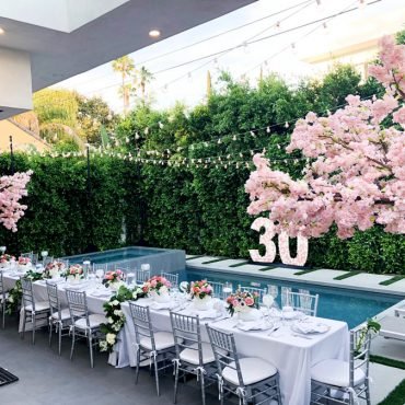 San Diego Tree Rentals - Cherry Blossoms