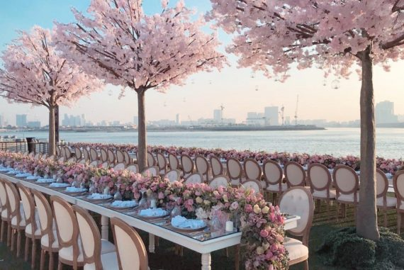 Cherry Blossom Tree Rental
