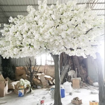 Cherry Blossom Tree Rental for Weddings & Events in California & Vegas