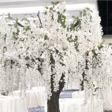 White Wedding Tree Rental