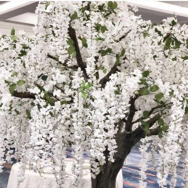 White Wedding Tree Rental