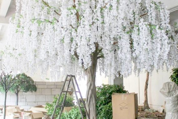 Wisteria Tree Rentals for Weddings