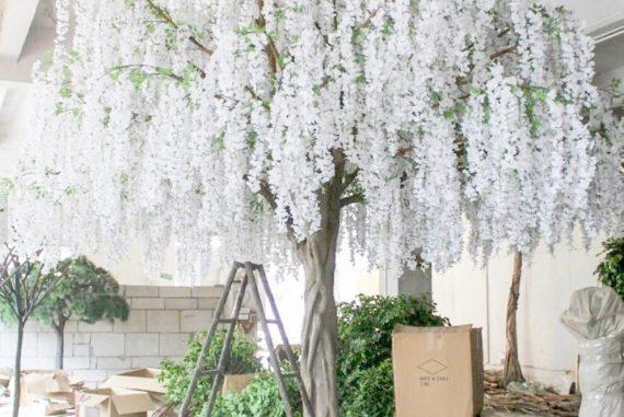 Wisteria Tree Rentals for Weddings
